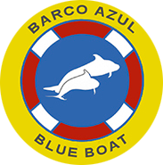Licenced Blue Boat for Dolphins and Whales Search